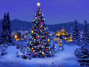 Weihnachten-Gruss